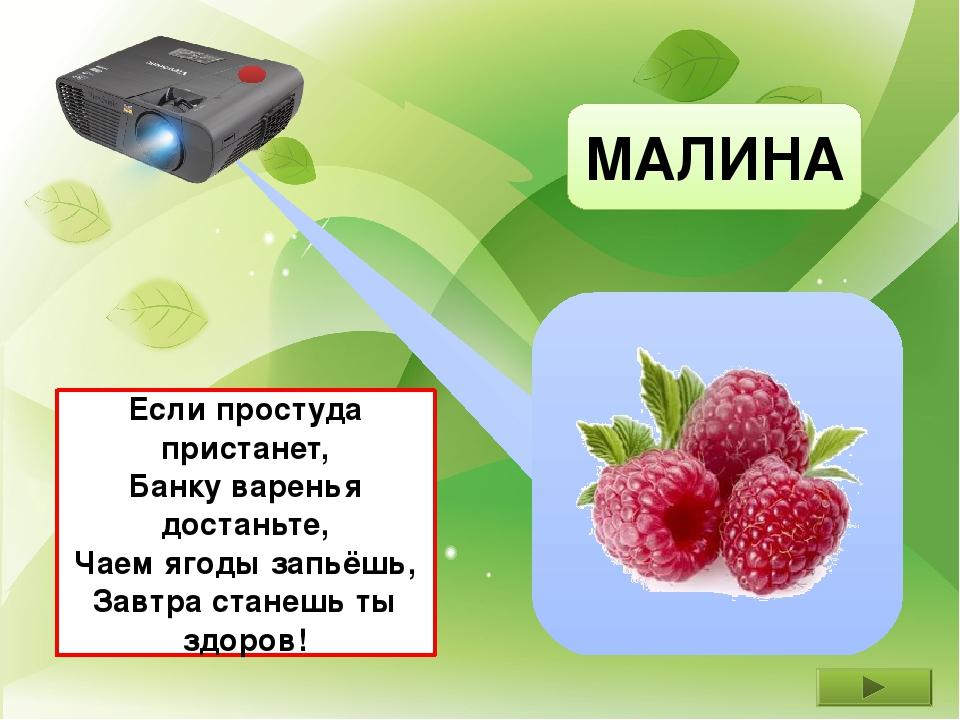 МАЛИНА Если простуда пристанет, Банку варенья достаньте, Чаем ягоды запьёшь,...