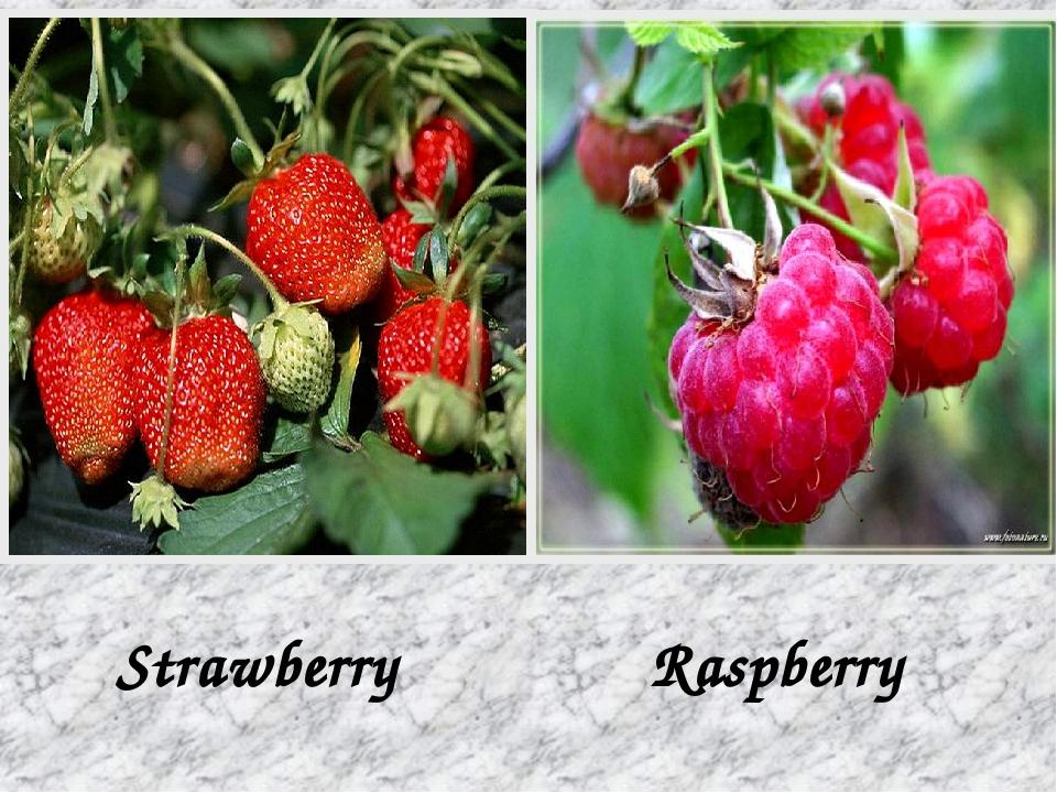 Strawberry Raspberry