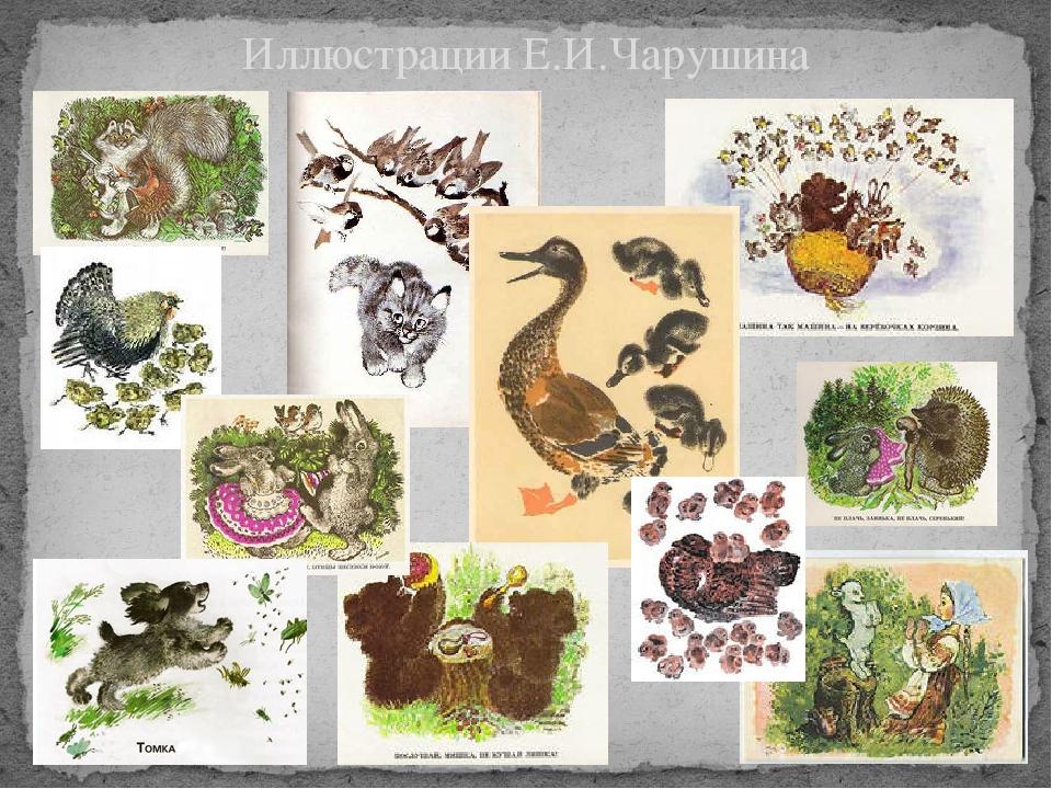 Иллюстрации Е.И.Чарушина