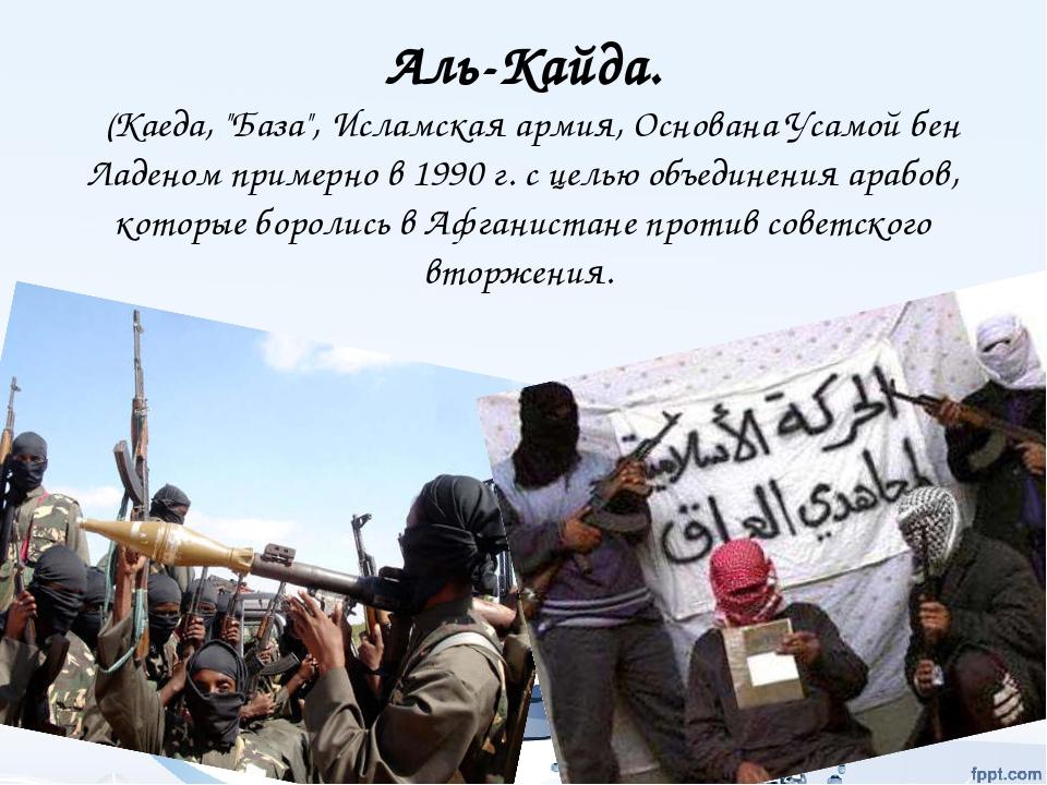 the al qaida network essay