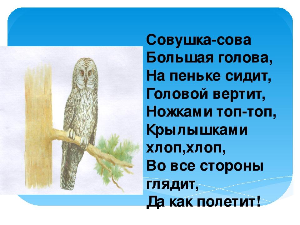 Совушка-сова Большая голова, На пеньке сидит, Головой вертит, Ножками топ-топ...