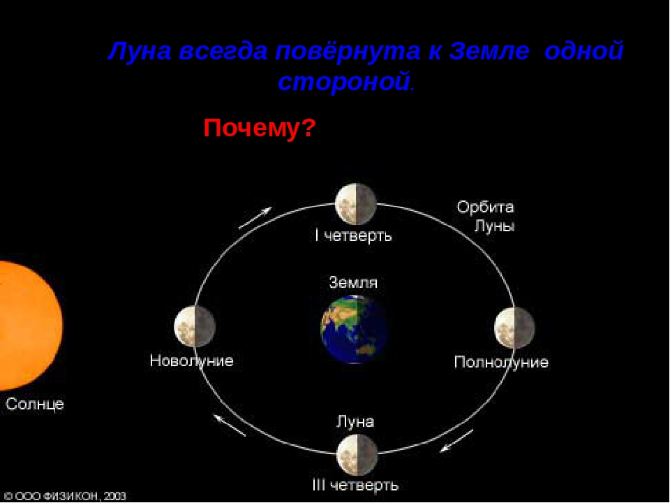 the function of the moon in