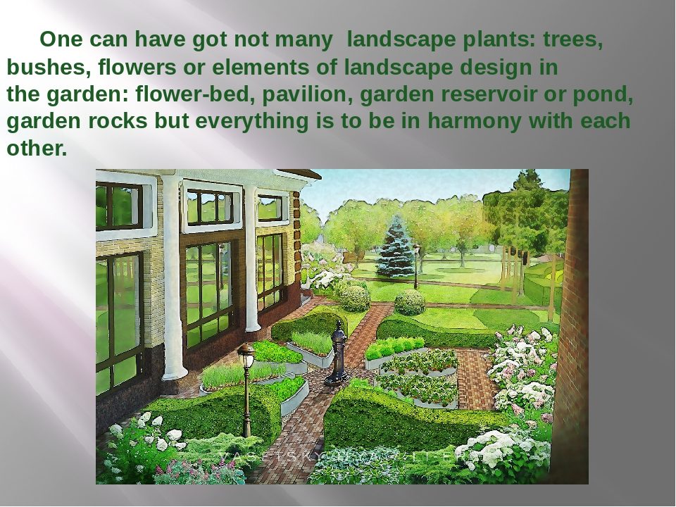 One can have got not many landscape plants: trees, bushes, flowers or eleme...