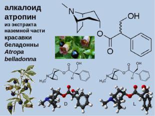 алкалоид атропин из экстракта наземной части красавки беладонны Atropa bellad
