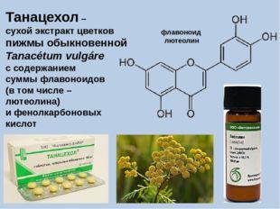 Танацехол – сухой экстракт цветков пижмы обыкновенной Tanacétum vulgáre с сод
