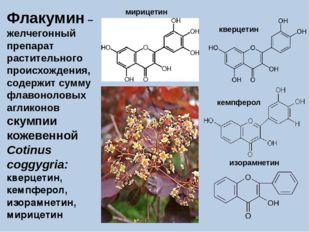 Флакумин – желчегонный препарат растительного происхождения, содержит сумму ф