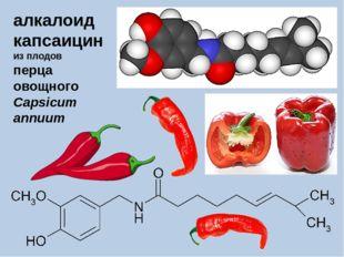 алкалоид капсаицин из плодов перца овощного Capsicum annuum