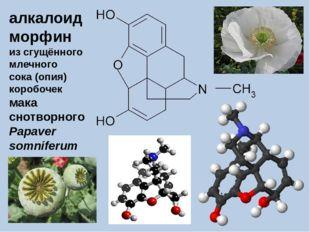 алкалоид морфин из сгущённого млечного сока (опия) коробочек мака снотворного