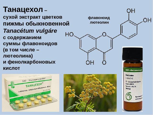 Танацехол – сухой экстракт цветков пижмы обыкновенной Tanacétum vulgáre с сод...