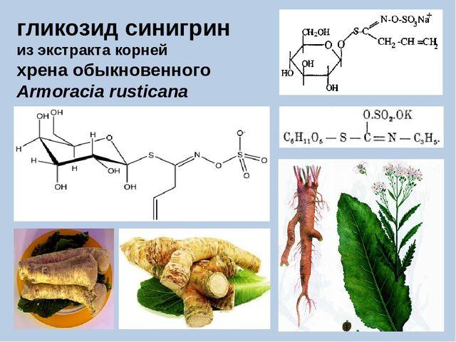 гликозид синигрин из экстракта корней хрена обыкновенного Armoracia rusticana