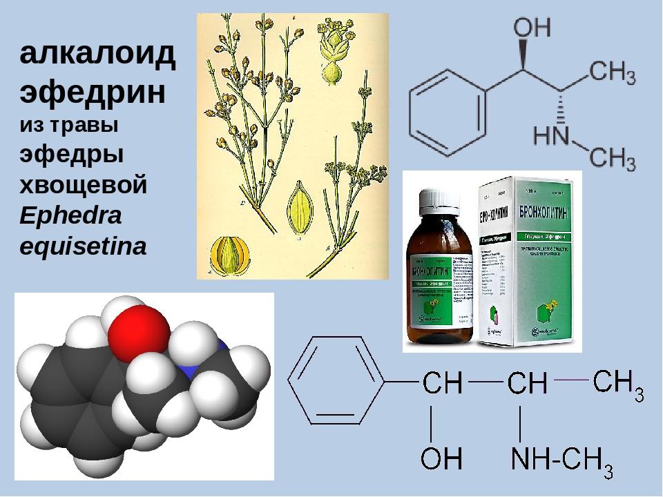 алкалоид эфедрин из травы эфедры хвощевой Ephedra equisetina