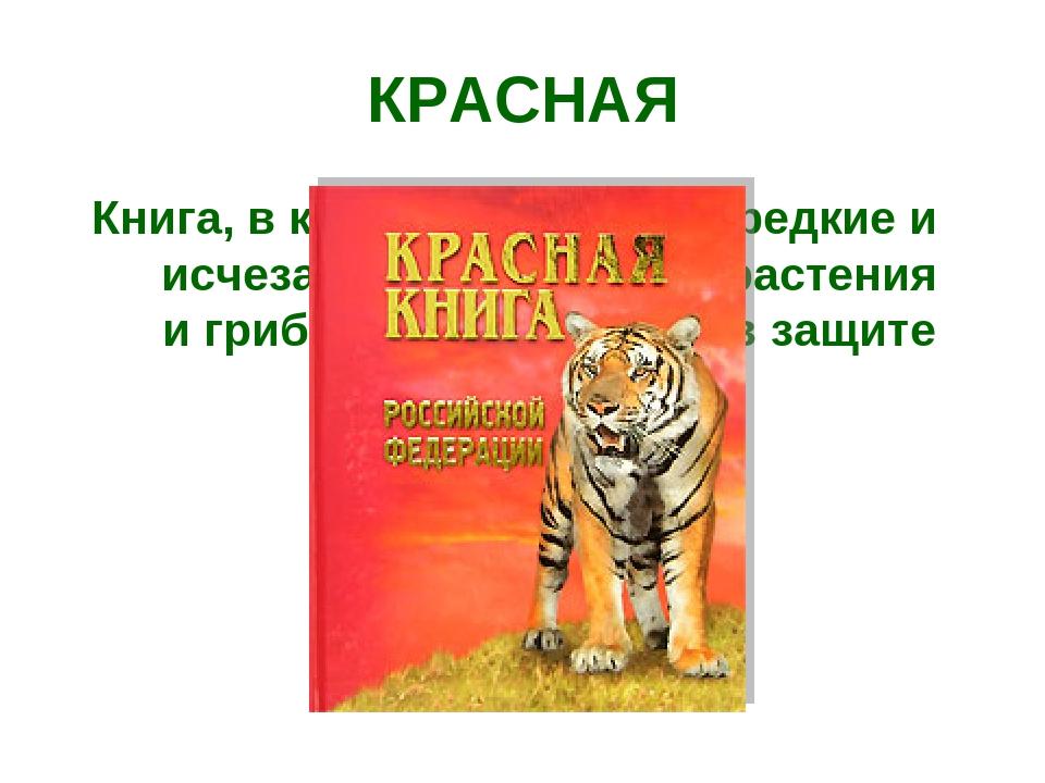 Книга, в которую занесены редкие и исчезающие животные, растения и грибы, нуж...