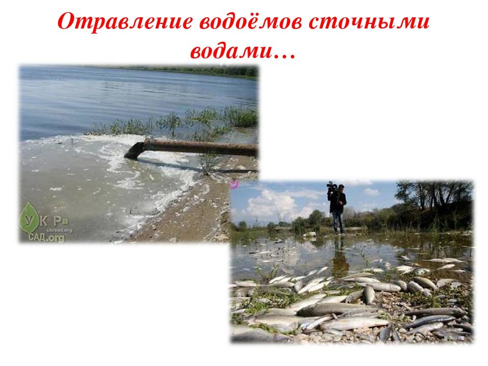 Отравление водоёмов сточными водами…