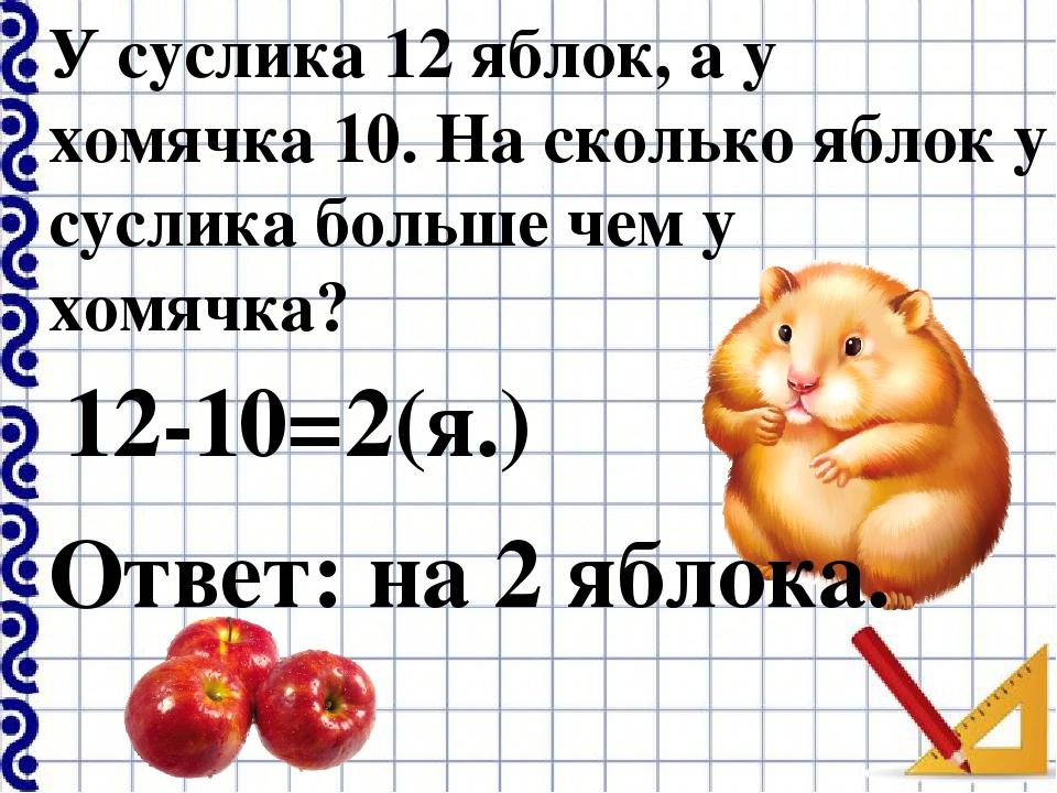 У суслика 12 яблок, а у хомячка 10. На сколько яблок у суслика больше чем у х...