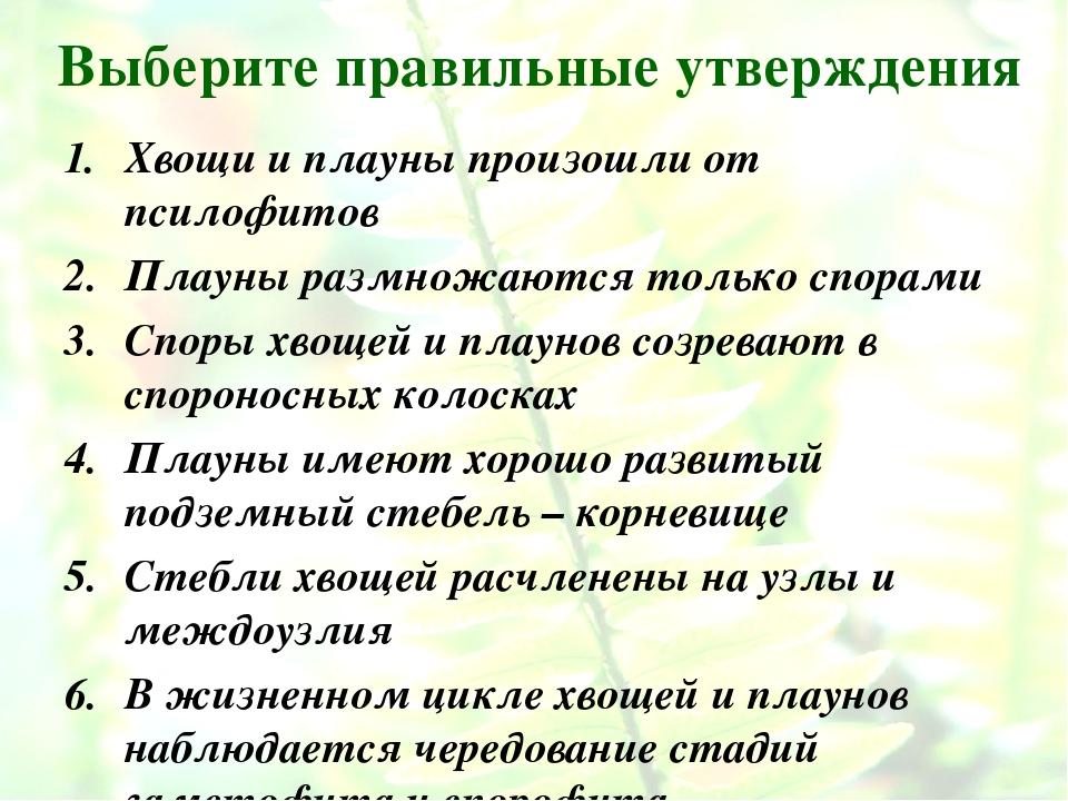 Выберите правильные утверждения Хвощи и плауны произошли от псилофитов Плауны...