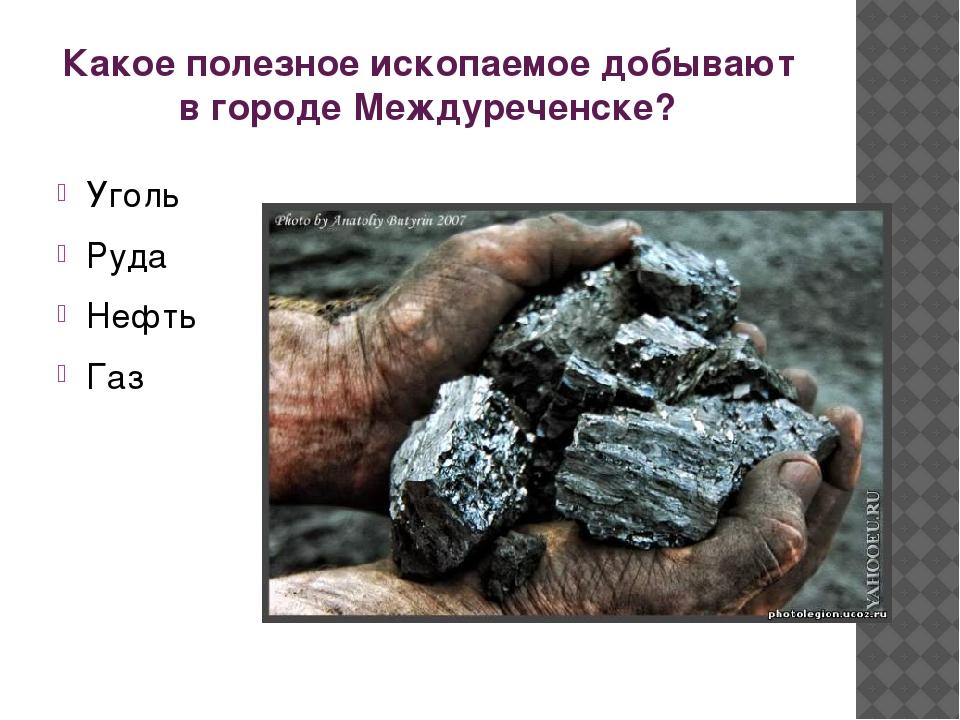 Какое полезное ископаемое добывают в городе Междуреченске? Уголь Руда Нефть Газ