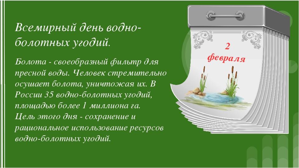 2 февраля Всемирный день водно-болотных угодий. Болота - своеобразный фильтр...