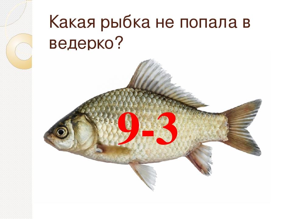 Какая рыбка не попала в ведерко? 9-3