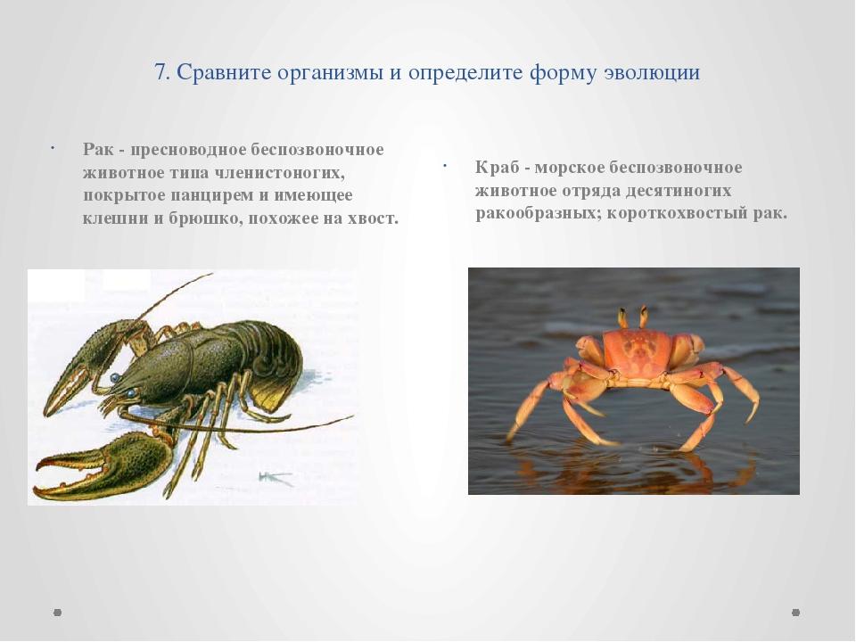 7. Сравните организмы и определите форму эволюции Рак - пресноводное беспозв...