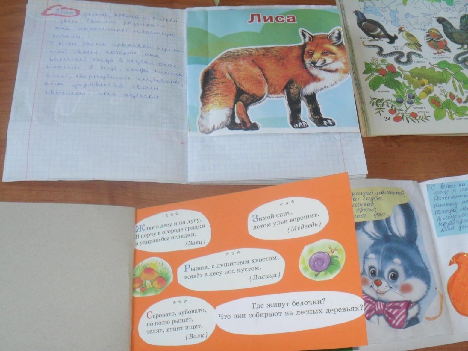 Как сделать книжку о животных своими руками