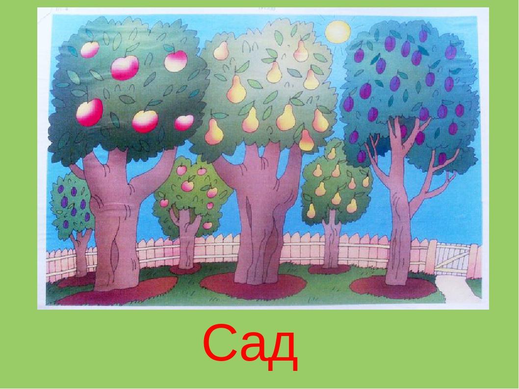 панели картинка фруктового сада без фруктов юридическая