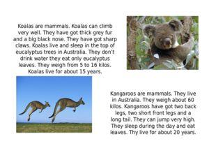 Koalas are mammals. Koalas can climb very well. They have got thick grey fur