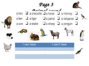 Page 3 Animal sound I can hear I can't hear