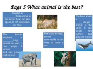 Page 5 What animal is the best? Cheetah is _________(fast) animal in the worl
