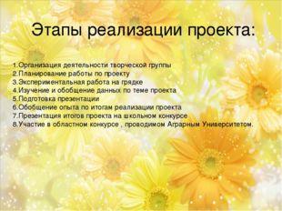 Этапы реализации проекта: 1.Организация деятельности творческой группы 2.План