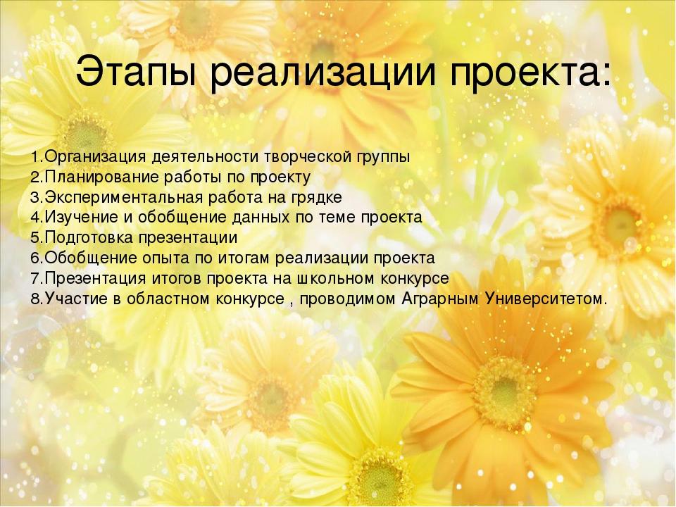 Этапы реализации проекта: 1.Организация деятельности творческой группы 2.План...