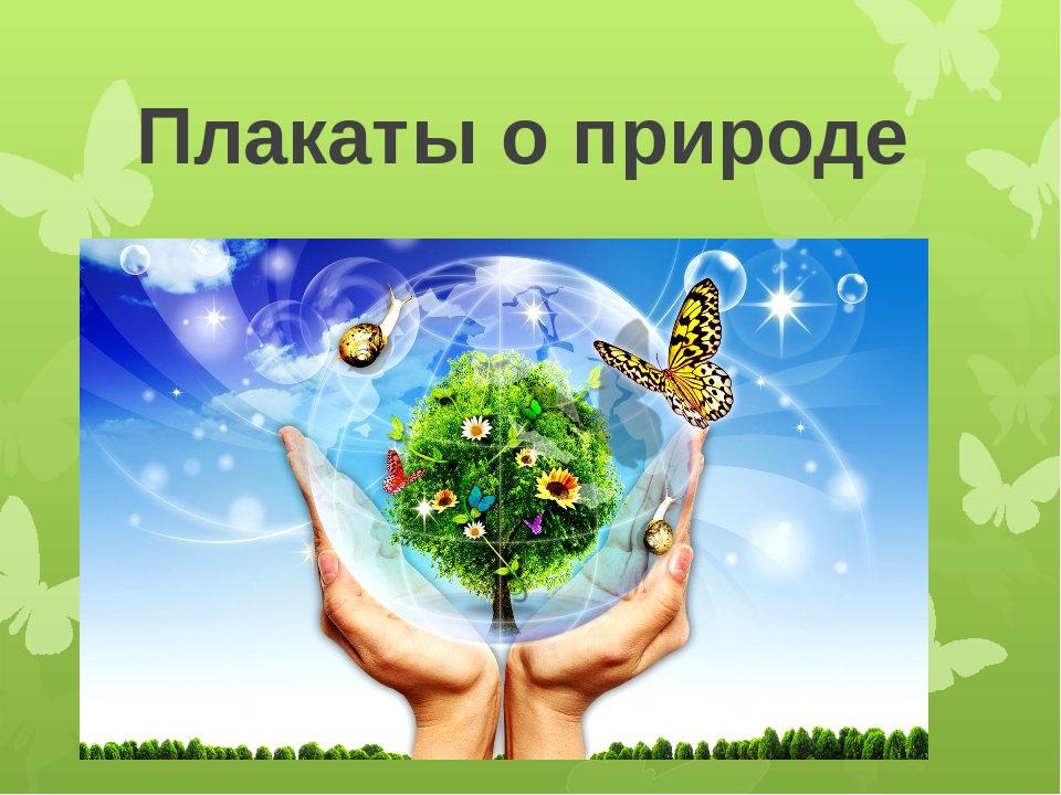 Плакаты о природе 7