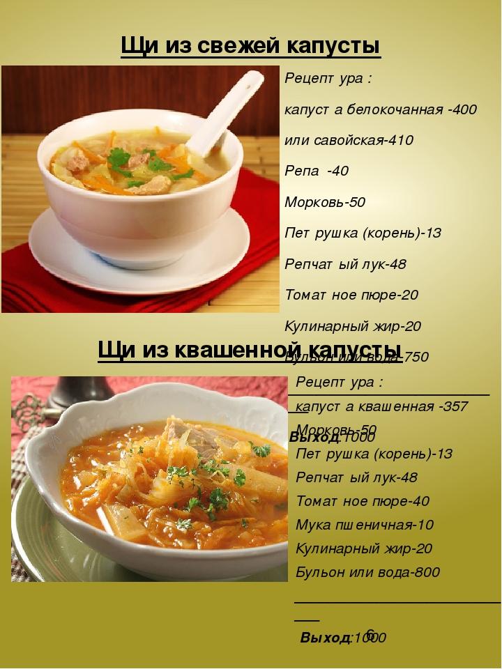 рецепт щёй из свежей капусты
