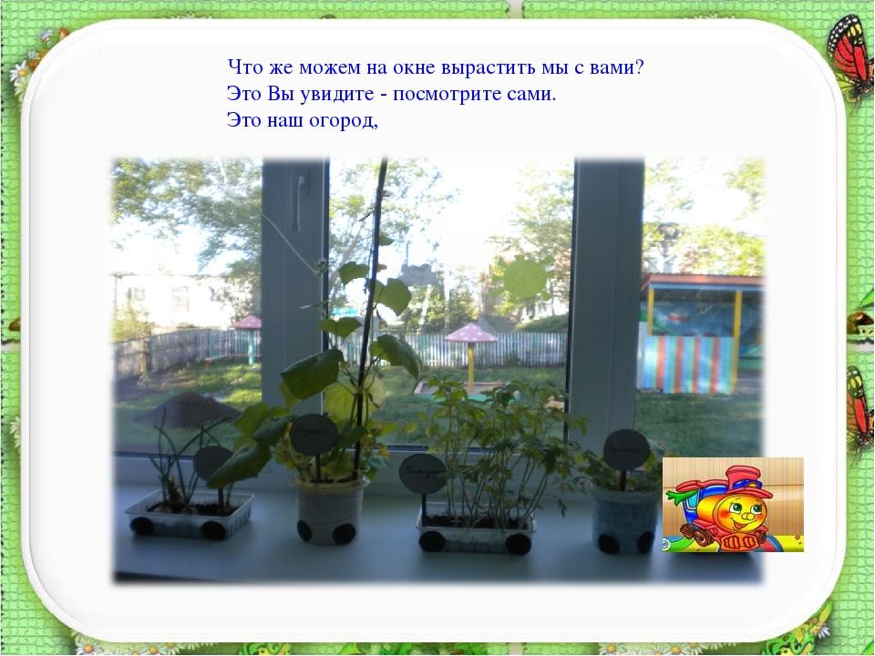 картинка к проекту огород на окне построении орифлейм