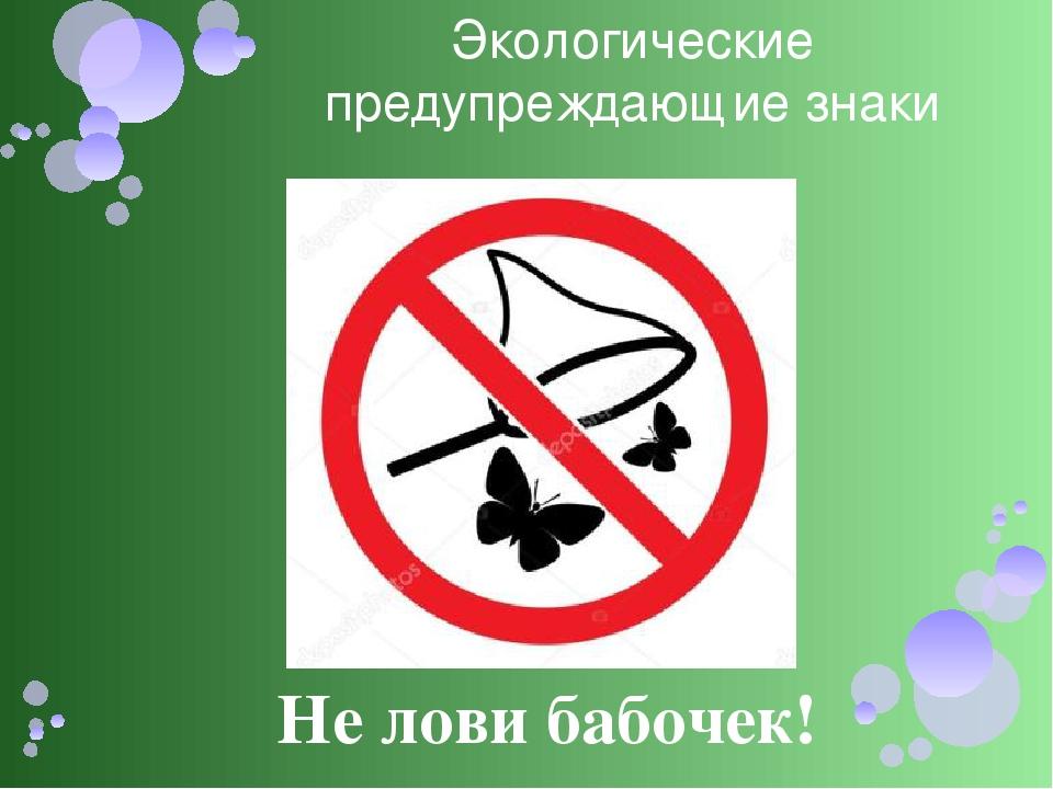 знак не ловить насекомых картинка кайма