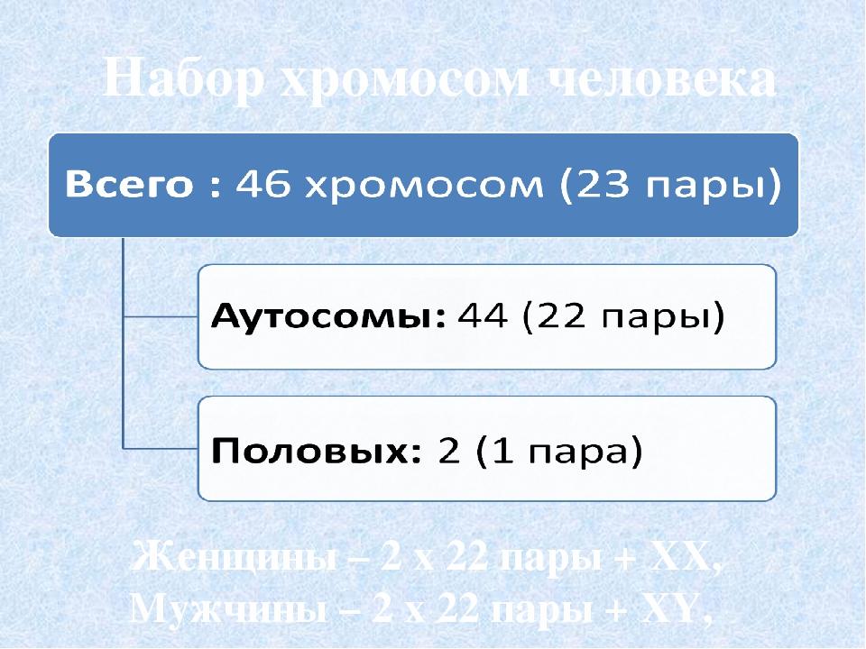 Хромосомный набор человека Женщина XX Мужчина XY
