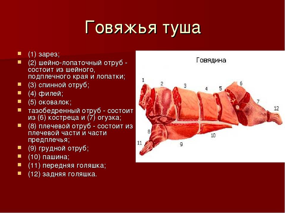 Говяжья туша (1) зарез; (2) шейно-лопаточный отруб - состоит из шейного, подп...