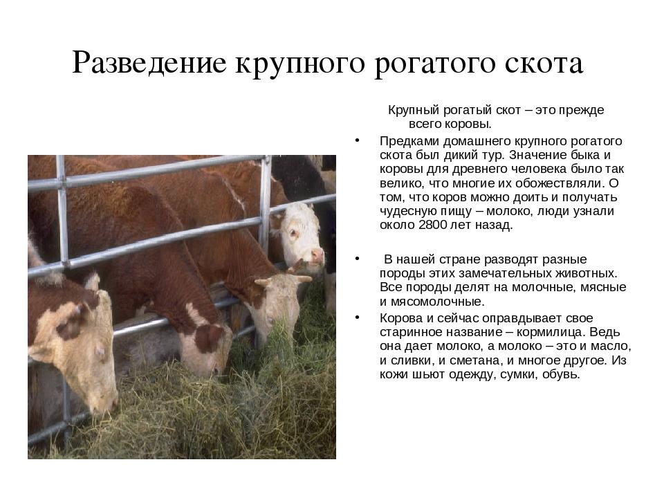 МИРАГРОcom  сельскохозяйственный портал
