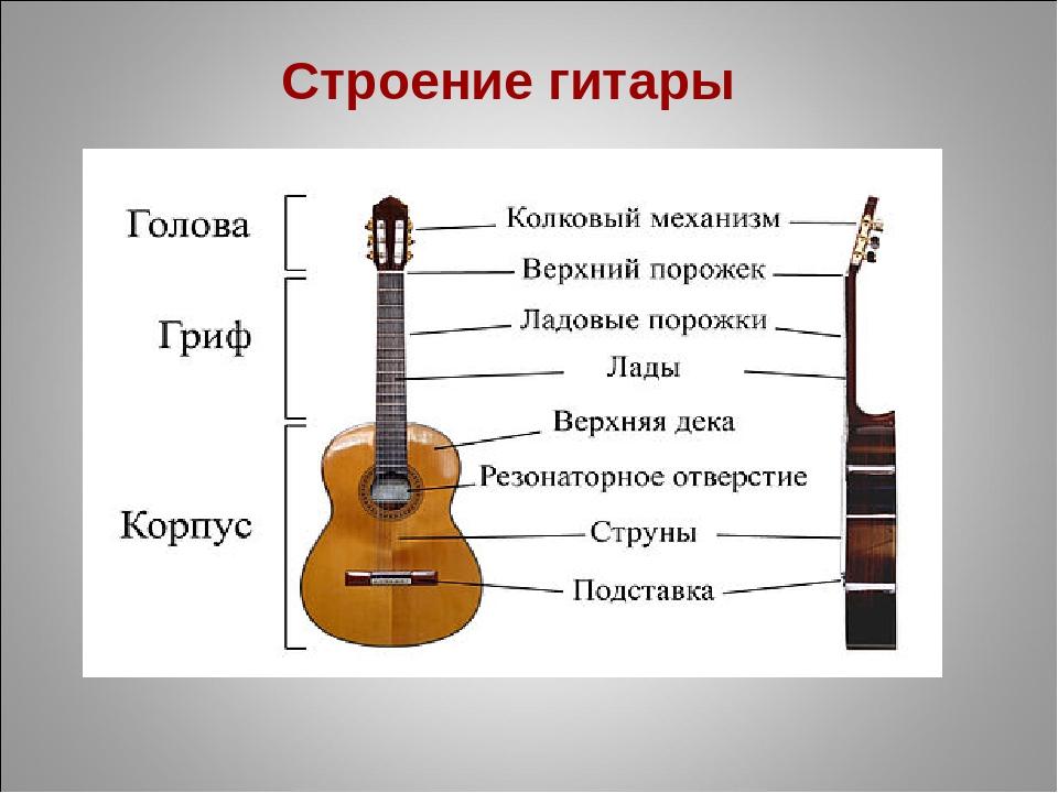 схема строения гитары этой статье