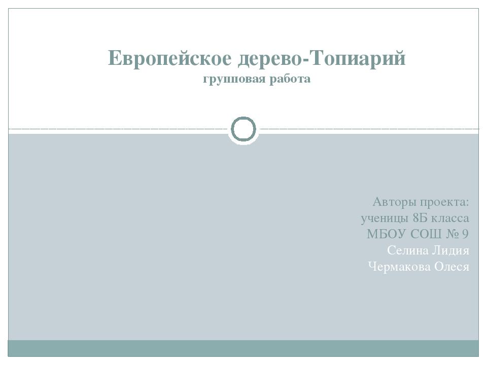 Авторы проекта: ученицы 8Б класса МБОУ СОШ № 9 Селина Лидия Чермакова Олеся Е...