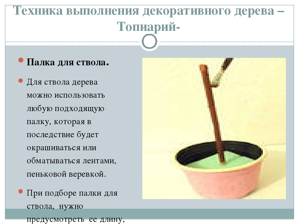 Техника выполнения декоративного дерева –Топиарий- Палка для ствола. Для ство...