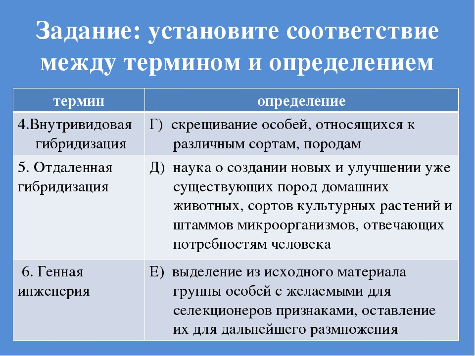 Задание: установите соответствие между термином и определением терминопредел...