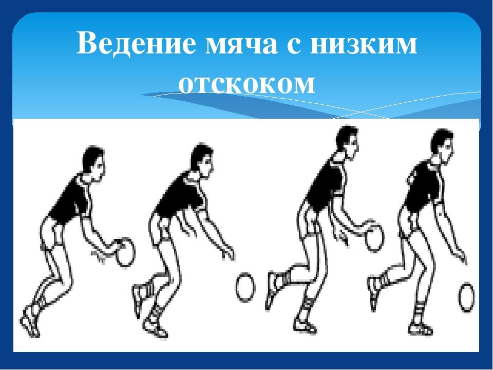 семейства техника ведения мяча в баскетболе с картинками множество вариантов