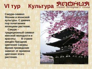 VI тур Культура Сакура-символ Японии и японской культуры. С давних пор почита