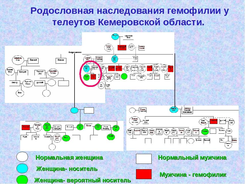 Родословная наследования гемофилии у телеутов Кемеровской области. Нормальн...