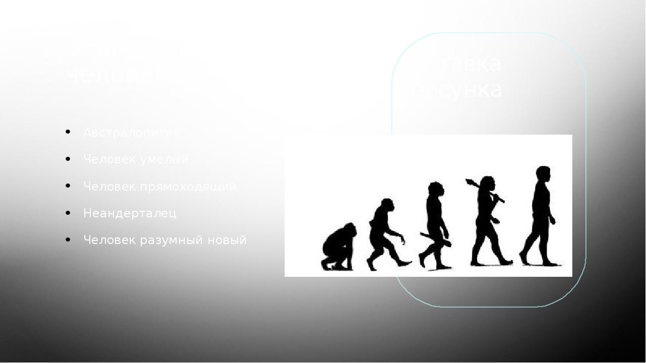 Этапы эволюции человека: Австралопитек Человек умелый Человек прямоходящий Не...