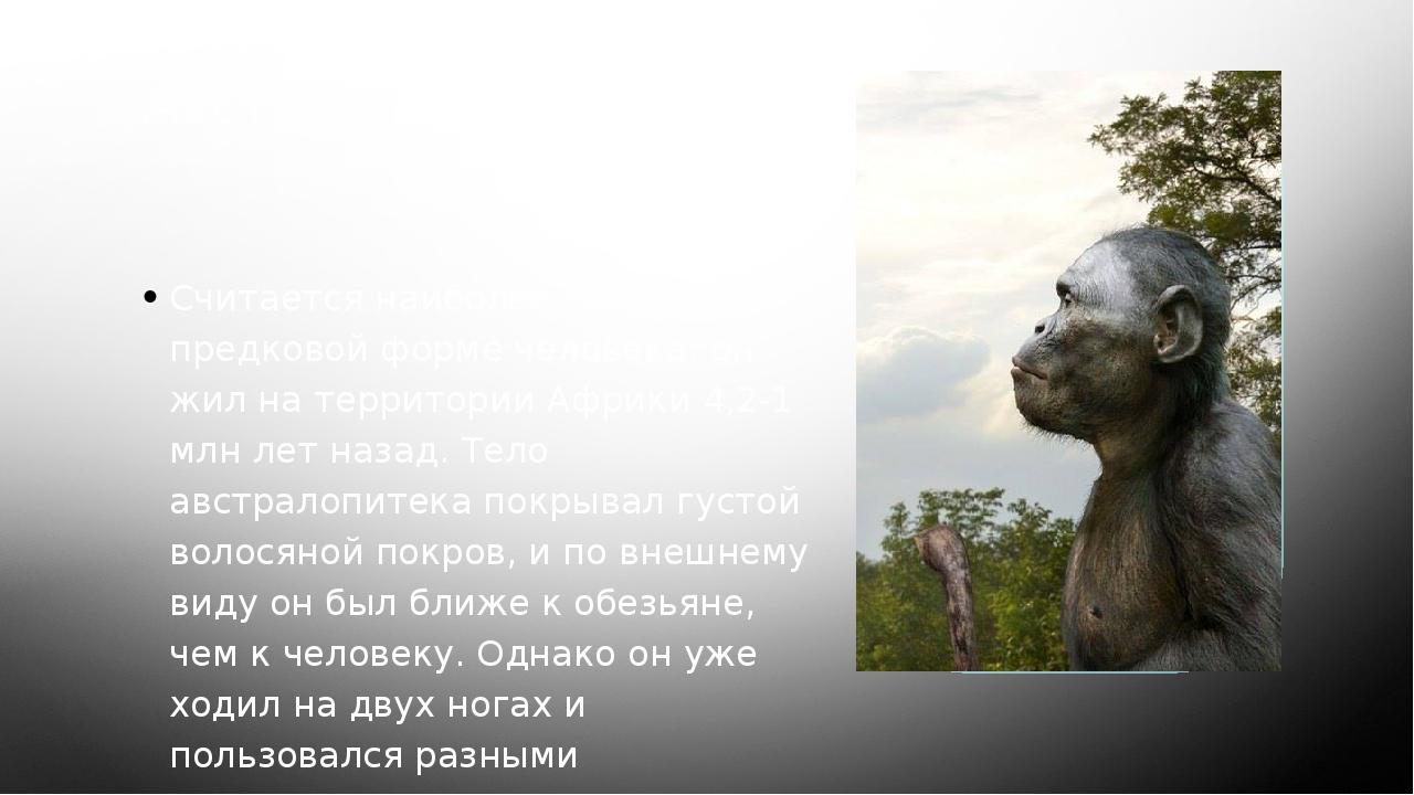 Австралопитек Считается наиболее близким к предковой форме человека; он жил н...