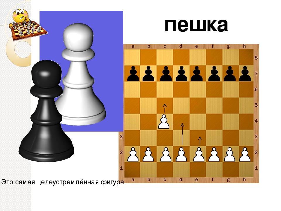 правильное название шахматных фигур с картинками
