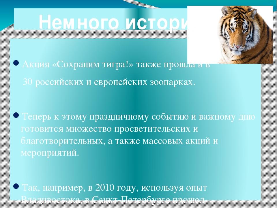 период, когда амурский тигр стихи последнем