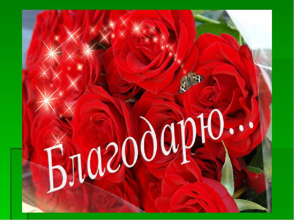 http://ds04.infourok.ru/uploads/ex/0b27/000304de-3873b58e/img5.jpg