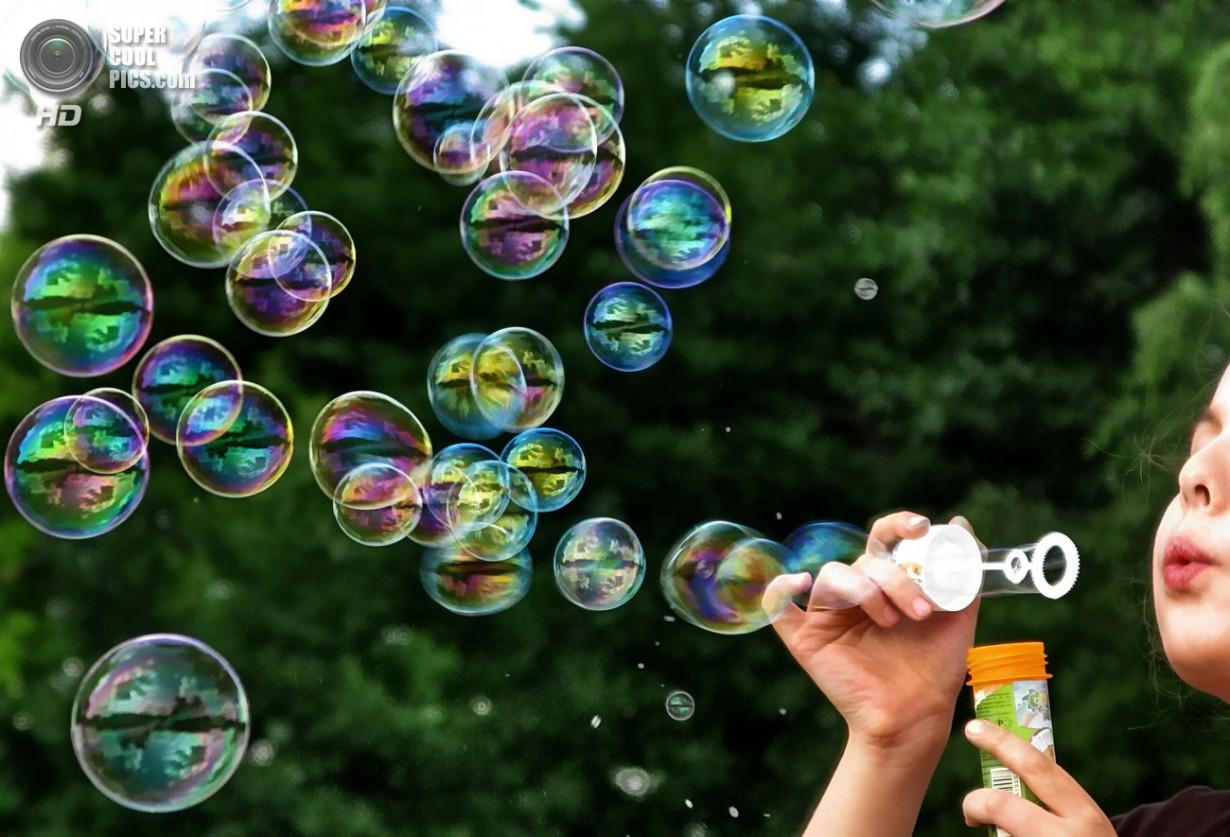 Смешные, мыльные пузыри открытка